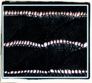 Joan: the stitch'schart